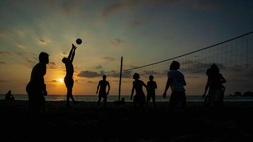 person silhouette of people playing volleyball people