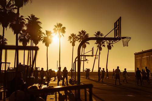 person silhouette photo of people in basketball court during golden hour people