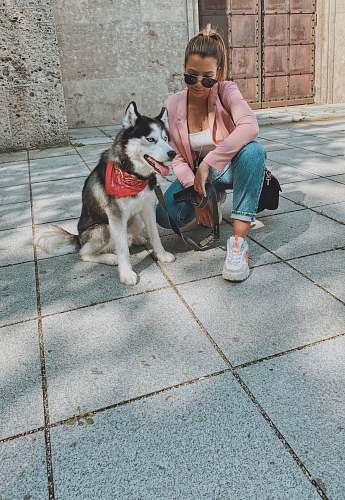 person woman kneeling beside Siberian husky dog