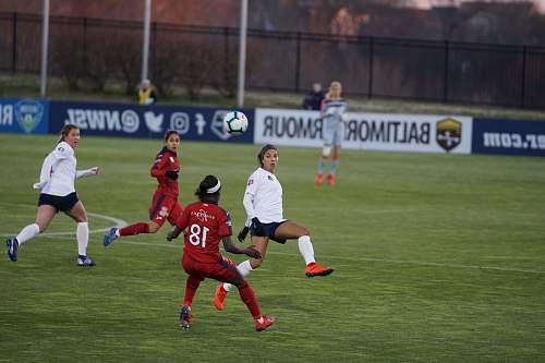 human women playing soccer on green grass field people