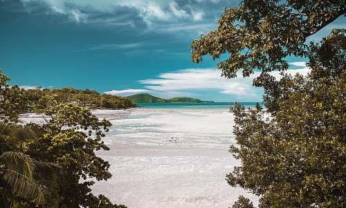 thailand aerial photography of white sand beach during daytime beach