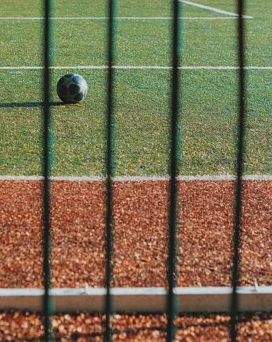 ball black soccer ball on green grass field asphalt