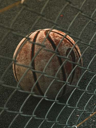 lyon brown and black basketball with autograph france