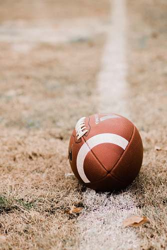 sports brown football tennis ball