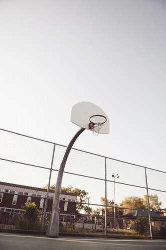 sports white basketball system team