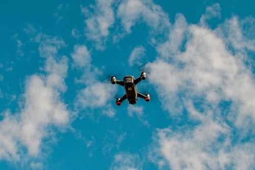 bird black drone under blue sky flying