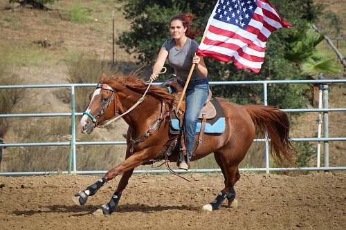 mammal woman holding US flag riding brown horse during daytime horse