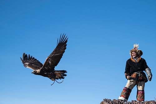 bird man standing near flying bird eagle