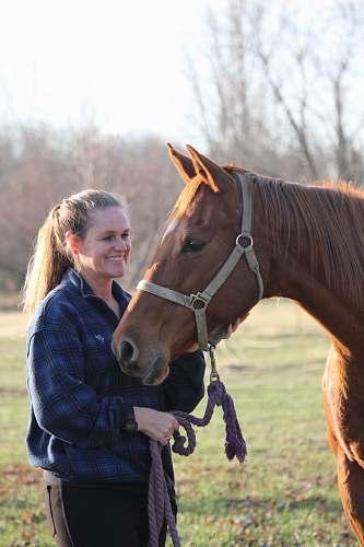 horse woman holding horse mammal