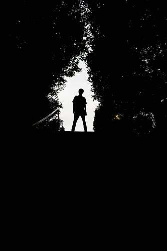silhouette silhouette of man standing on top of stairs person