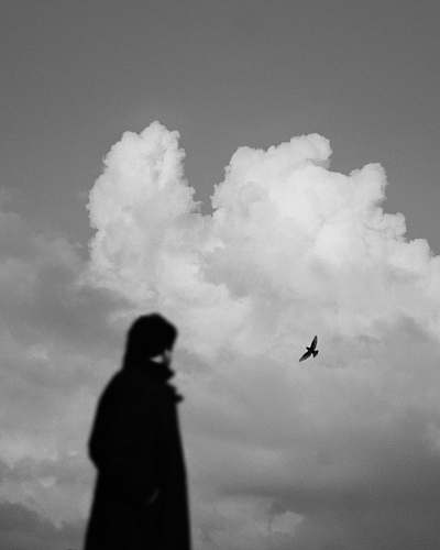 black-and-white grayscale photography of silhouette of a person and a bird cloud