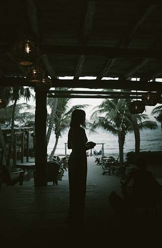 person silhouette of woman standing beside beach people