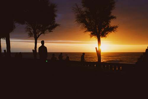 sunset  human