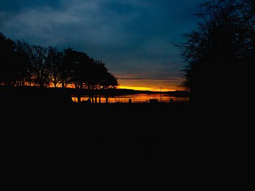 outdoors silhouette of trees and lake sunset scenery dawn
