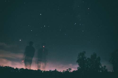 night silhouette of trees under dark sky with stars people