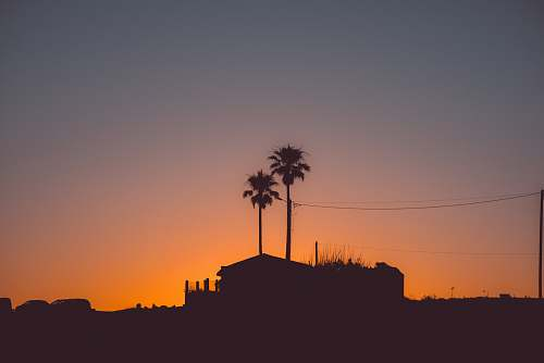outdoors silhouette photography of house near palm tree during golden hour sunset