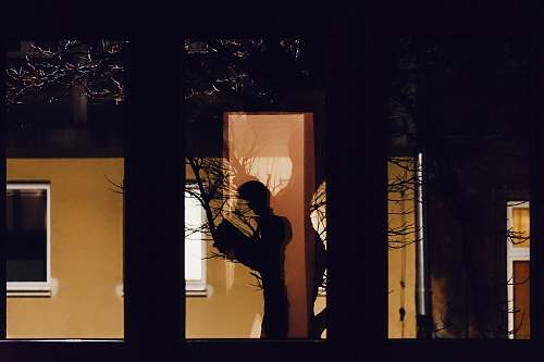 human reflection of tree through window silhouette