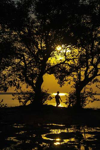 human silhouette of boy standing near body of water during golden hour sunlight