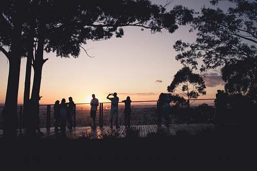 sunset silhouette photography of people human