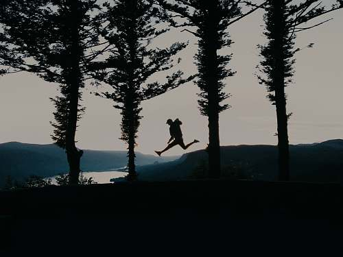 tree leaping person by trees silhouette abies