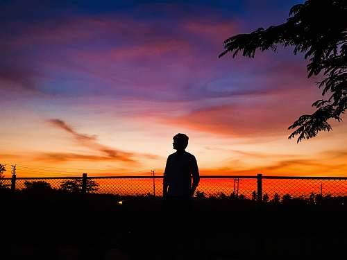 nature man standing in front of chain link fence during golden hour outdoors