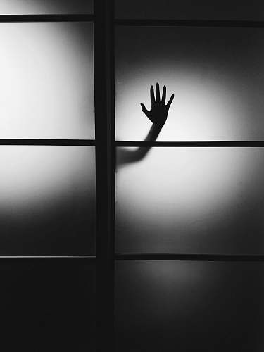 black-and-white photo of person's hand on wall hand