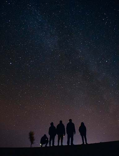 person silhouette of five persons staring at the stars at night human