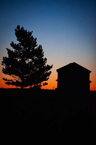 nature silhouette of house and tree during golden hour outdoors