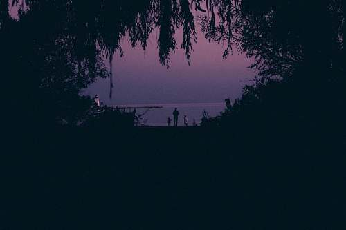 outdoors silhouette of man standing near the tree nature