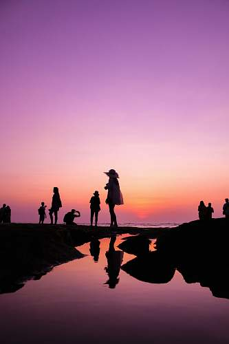 human silhouette of people at shore during golden hour person