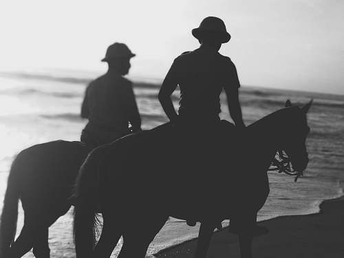 black-and-white silhouette of people riding horses on shore horse