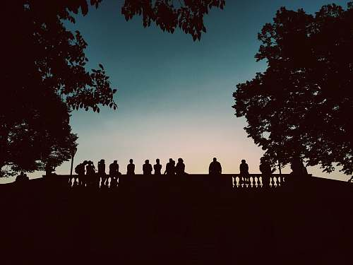 photo grey silhouette of people standing beside bridge during blue hour tree free for commercial use images
