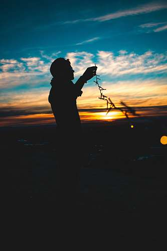 person silhouette of person holding string lights during sunset sunrise