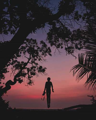 nature silhouette of person standing on seashore outdoors