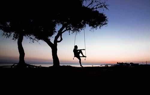 swing silhouette of tree near body of water greece