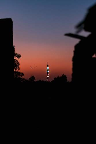 nature silhouette of trees and tower during nighttime outdoors