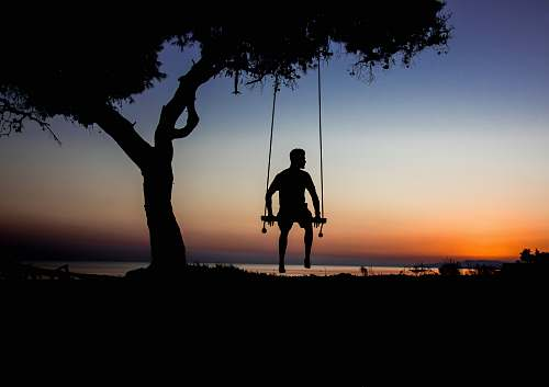 human silhouette photo of man on swing beside tree person