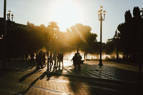 people silhouette photo of people at park during golden hour nice
