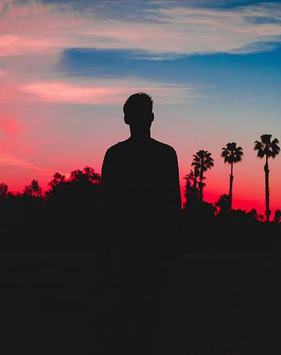 person silhouette photo of person behind coconut trees photo human