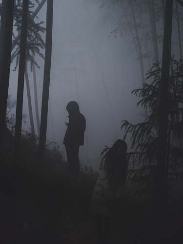 photo person two persons in forest with thick fog grey free for commercial use images