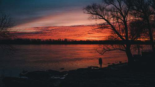 sunrise silhouette of person standing near tree and body of water at nighttime sunset