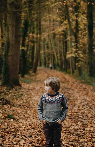 person boy with hands in his pockets looking at his left near trees during autumn season people