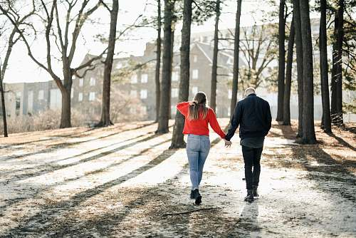 people couple holding hands while walking near brown trees during daytime person