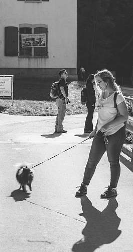 people greyscale photo of woman walking the dog black-and-white