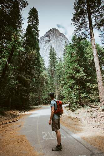 person man carrying red camping backpack near mountain tree