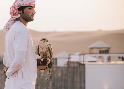 people man standing beside eagle during daytime person