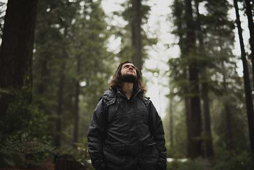 people man wearing black jacket looking up surrounded with tall trees person