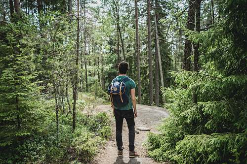 person man wearing blue backpack walking through forest people