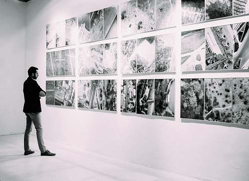 person person looking at gallery art pieces on wall people