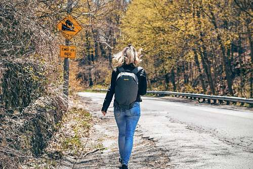 person person walking on pethway between green leafed trees people